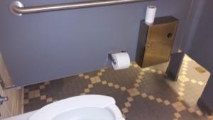 Restroom Bug Sweeps