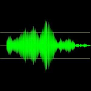 Audio Bug Sweeps