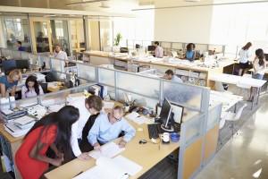 Office Bug Sweeps